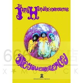 Jimi Hendrix 官方正版出品 Are You Experienced 挂旗 海报