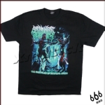 ABOMINABLE PUTRIDITY - Anomalies of Artificial (TS-XL)TTH1910